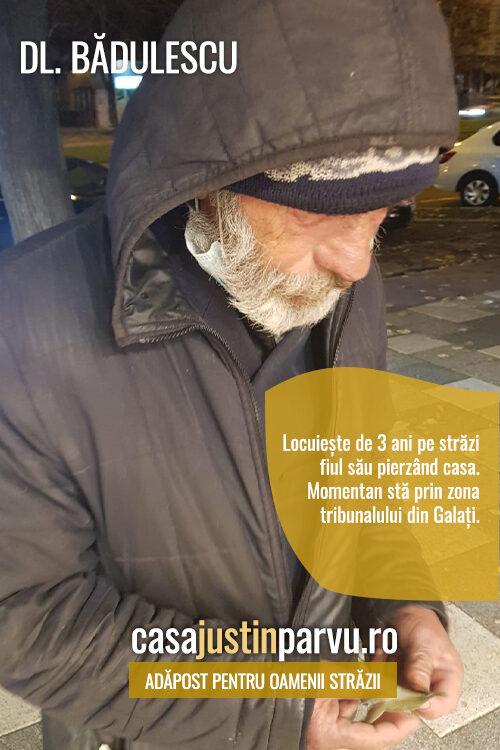 dl badulescu